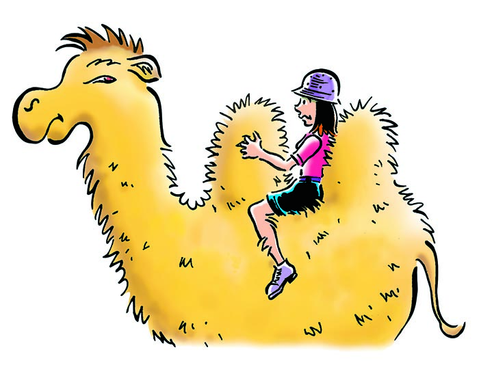 """""""Travel by Camel"""" Humorous Illustration NYC"""